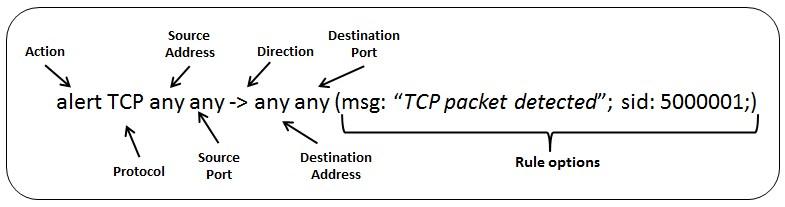 Detectar TCP