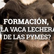 Formación, la vaca lechera de las pymes