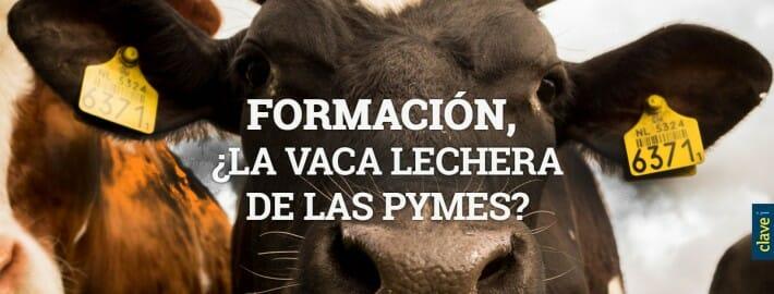 FORMACIÓN, ¿LA VACA LECHERA DE LAS PYMES?
